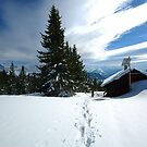 Snowshoeing  by expatraveler