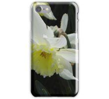 Spring Daffodil iPhone Case/Skin