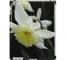 Spring Daffodil iPad Case/Skin