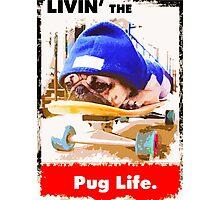 Livin' the Pug Life Photographic Print