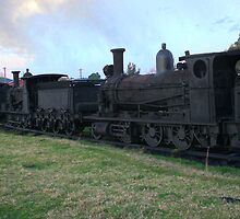 Dorrigo Trains by rossco