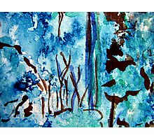Turquoise Forest Photographic Print