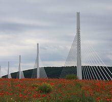 Viaduc de Millau, Midi-Pyrenees by stjc