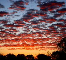 Dawn in the Northern Territory by Kotchka Images