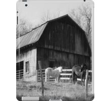 Out Behind The Barn iPad Case/Skin