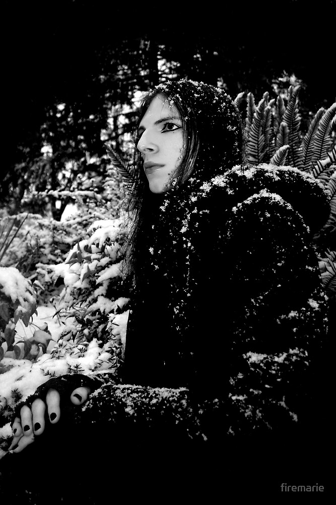 Snowy by Marie Arneklev