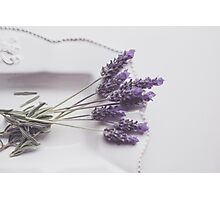 Lavender from my garden Photographic Print