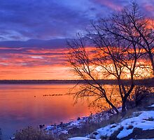Warmth Of A Winter's Morning by John  De Bord Photography