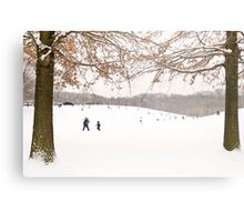 Winter scene outside in the snow Metal Print