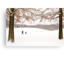 Winter scene outside in the snow Canvas Print