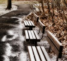 Three lonely benches by Gaby Swanson  Photography