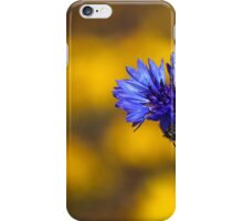 Blue Bachelor Button On Gold iPhone Case/Skin