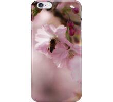 Blossom 3 iPhone Case/Skin