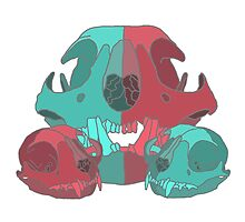 Cat Skull X3 by weedollybird