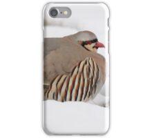 Antelope Island Chukar iPhone Case/Skin