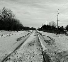 Black Track  by WildThingPhotos