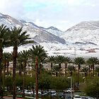 Palm Trees & Snow in Las Vegas Nevada, USA by RichardKlos