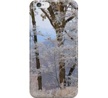 Winter Dreams, most winters I dream of spring iPhone Case/Skin