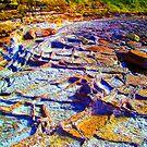 the art of rocks, rocks!! by Sam Fonte