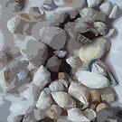 Shells, shells and more shells! by sarnia2