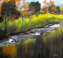 Rocky Stream by Ruth Palmer
