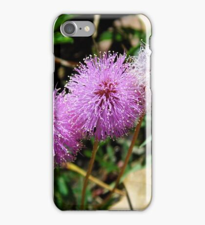Sensitive Brier iPhone Case/Skin