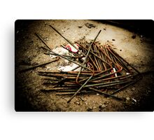 Devils And Dust Canvas Print