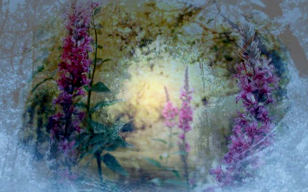 The Celestial  Winter to  Eternal  Spring      by Rick  Todaro