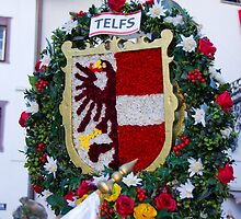 Coat of arms of Austrian town Telfs by Elzbieta Fazel