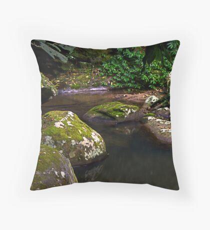 Dream Pool - Kangaroo Valley, NSW Throw Pillow