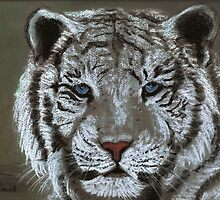White Tiger by Dawn B Davies-McIninch