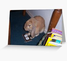 The Lop-Ear Bunny Greeting Card