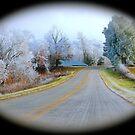 Rural Road,  Brannon Mt. NW Arkansas, USA by NatureGreeting Cards ©ccwri