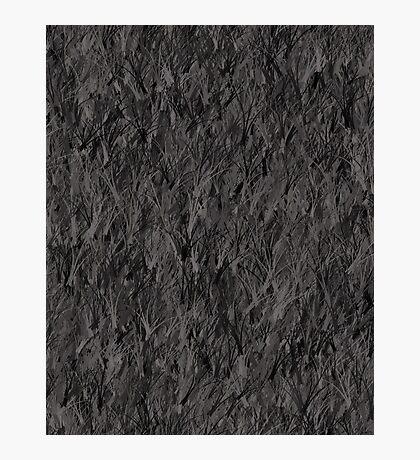 Grey Photographic Print