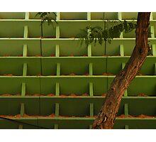 Parallel Universe + Tree Photographic Print