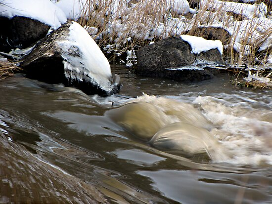 Cold Winter Day on the Long Tom River by Chuck Gardner