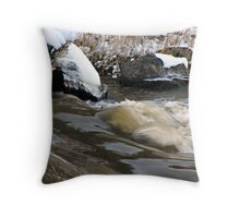 Cold Winter Day on the Long Tom River Throw Pillow