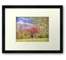 Valley Trees In Springtime Framed Print