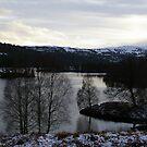 Glen Affric, Highlands, Scotland by Rebecca Silverman