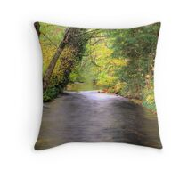Down River Throw Pillow
