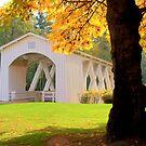 Autumn Bridge by Celine Chamberlin