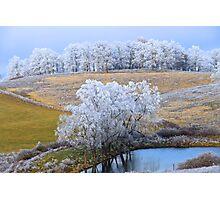 Scenic Winter, Brannon Mt. NW Arkansas, USA  Photographic Print