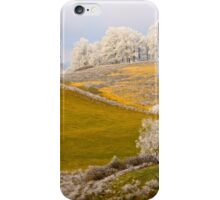 Golden Winter, Brannon Mt. NW Arkansas, USA iPhone Case/Skin