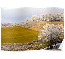 Golden Winter, Brannon Mt. NW Arkansas, USA Poster