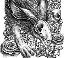 I Am the Rabbit - Dead Skull Head Rabbit with Roses by DanielleTrudeau