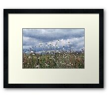 Summertime in the North West Framed Print