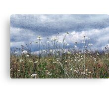 Summertime in the North West Canvas Print