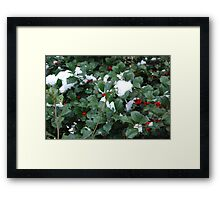 Snow in the Holly Framed Print