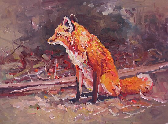 Red fox in the forest by Angie Rodrigues