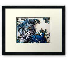 The Family Feud... Framed Print